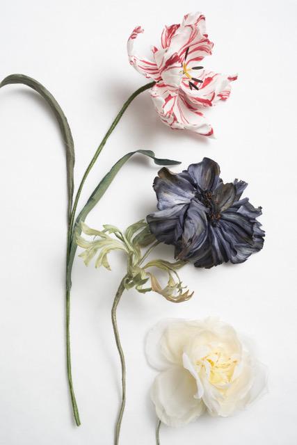 Effi Pingel - Fleuriste